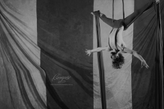Silks2_BW_act